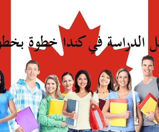 دليل الدراسة في كندا خطوة بخطوة للطلاب الدوليين