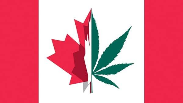 كندا توافق على تعاطي الماريجوانا بشكل قانوني